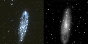 Two images of a galaxy, oblong in shape, bright blue on left, fuzzy gray on right.