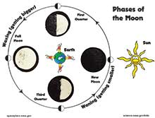 Photo of Moon phases activity sheet, with Oreo Moons placed at proper phases.