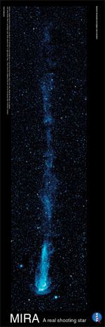 Image of long poster with blue star trailing a tail.