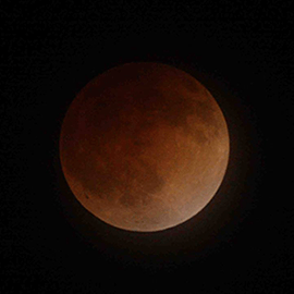 A blood moon against the night sky in 2014. Credit: NASA Ames Research Center/Brian Day