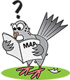 Bad (space) weather cancels pigeon races!