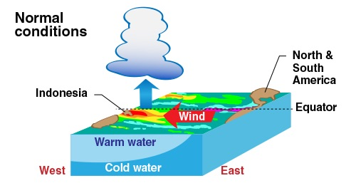 cartoon of normal winds, weather, and cloud formation in the Pacific Ocean