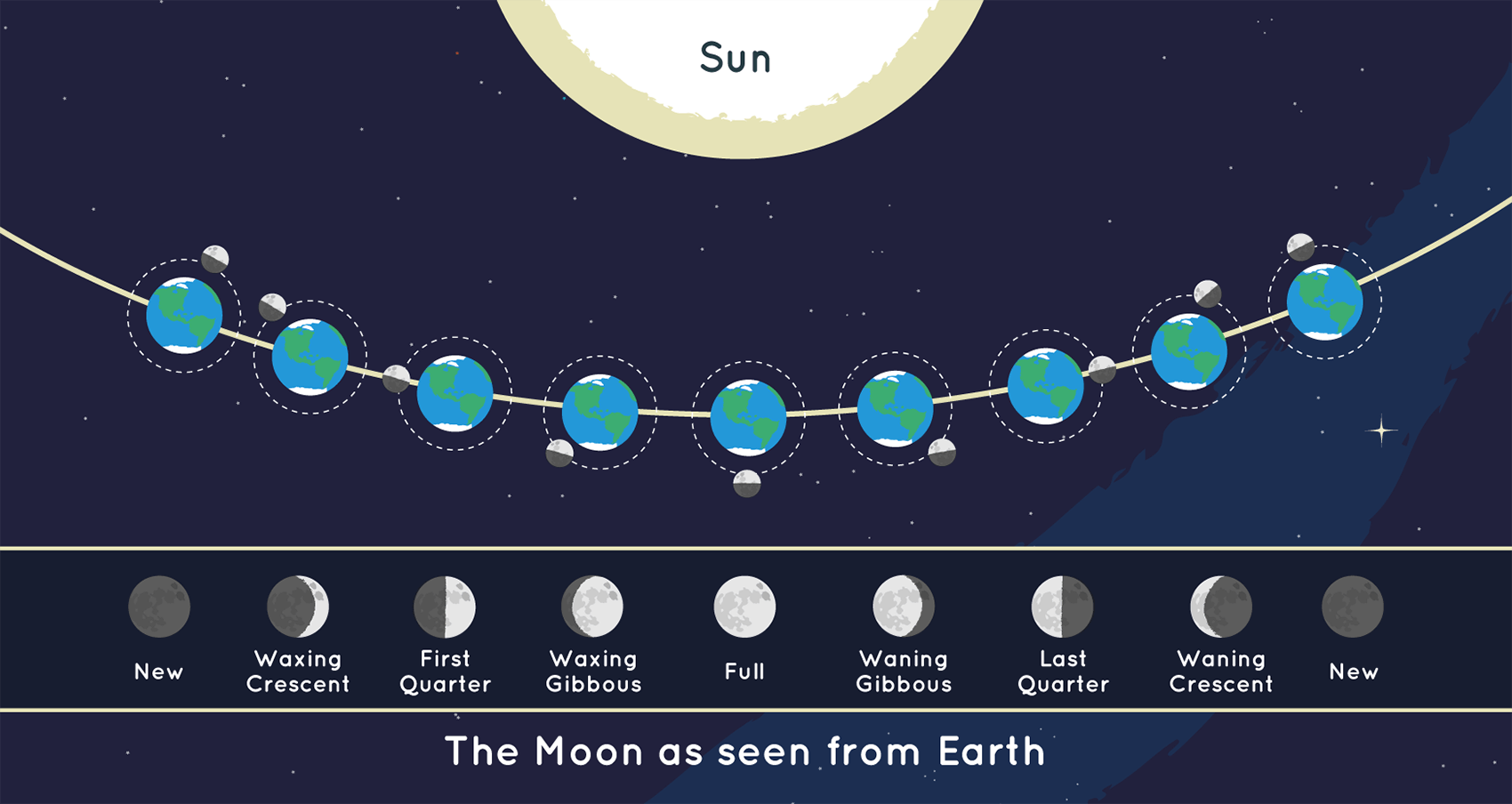 The position of the Moon and the Sun during Each of the Moon's phases and the Moon as it appears from Earth during each phase.
