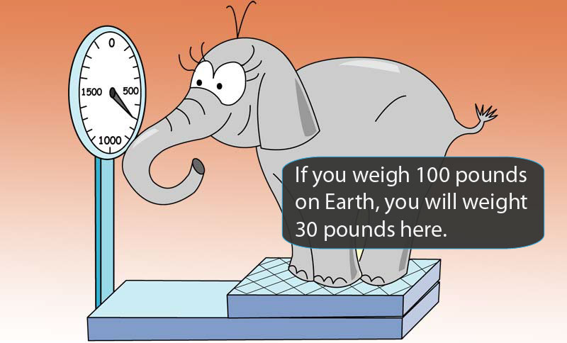Cartoon elephant on scale.