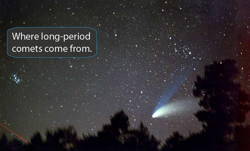 Photo of comet in the sky, silouetted trees in foreground.