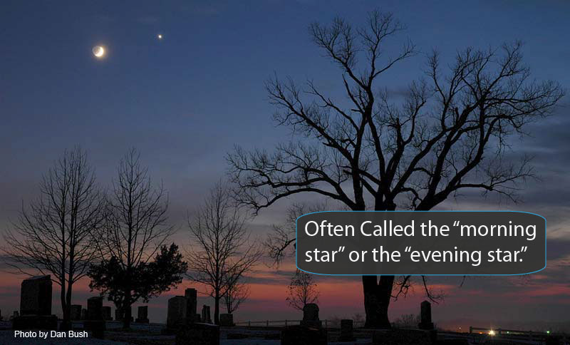 Morning star in the sky, with moon, and bare tree silouettes in foreground.