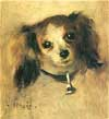 Portrait of little dog
